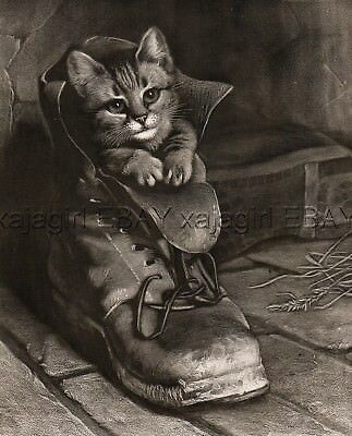 CAT Kitten In A Boot (Puss In Boots), Huge Folio-Sized Antique 1880s Print