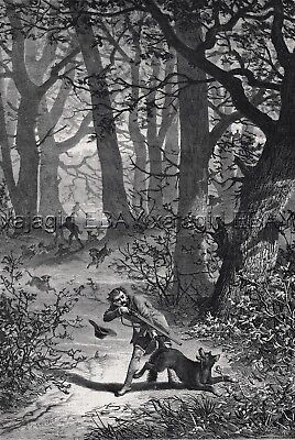 Wolf Hunting, Rifle & Dogs Forest, Large 1860s Antique Engraving Print & Article