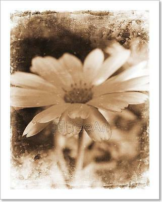 Floral Grunge Art Print Home Decor Wall Art Poster - D