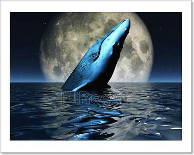 Whale On Oceans Surface With Full Moon Art Print Home Decor Wall Art Poster - D