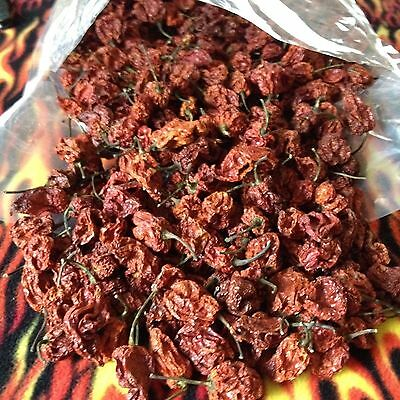 100 PODS Dried ORGANIC Carolina Reaper Peppers World Hottest Chili PODS W/SEED