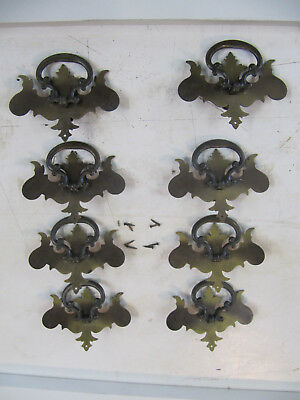 8 - Vintage Brass Plated Steel Chippendale Drop Ring Pull Drawer w/screws Brads