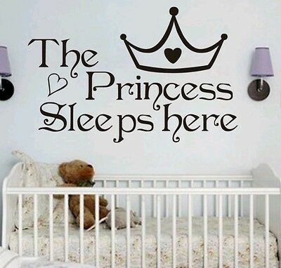 Princess wall decal sticker baby nursery girl bedroom home decor