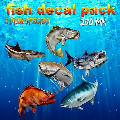 Fish Decal Pack  Sticker /decal/boat 250Mm X 6 Decals