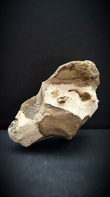 super upper palaeolithic/mesolithic portable rock art bust