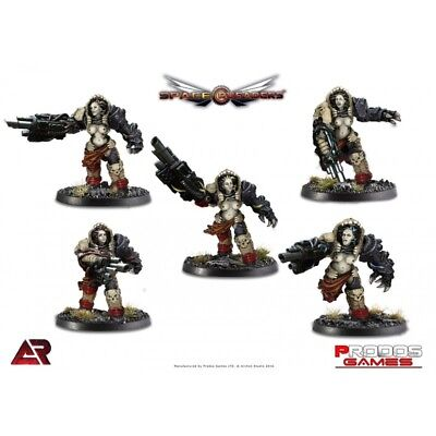 Prodos Space Crusaders 32mm Mabs Box - Sisters of Battle
