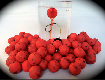 Bloodworm Flavour OOZE boilie pop ups Carp / Course fishing bait 14mm