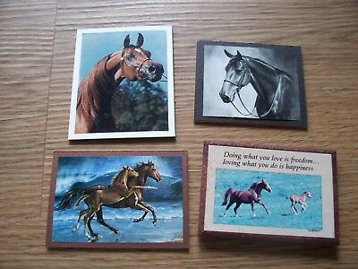 Thoroughbred Arabian Wooden Horse Magnet Lot Of 4