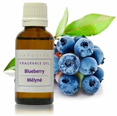 30 ml Blueberry Premium Fragrance Oil for Soap/Candle/Cosmetics