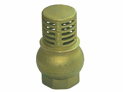 "2 "" FOOT VALVE WITH BRASS STRAINER, in TOP QUALITY #68"