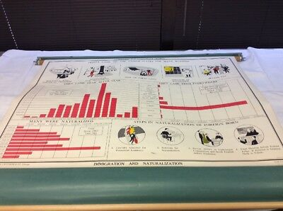 """Vintage NYSTROM Immigration & Naturalization 49.5"""" x 36"""" Pull Down Chart 04104A"""