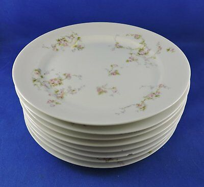Eight (8) Complete Place Settings Limoges Haviland Schleiger 1920s