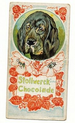 DOG Bloodhound, Rare Antique 1890s Trading Card