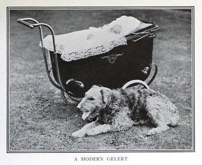 DOG Airedale Terrier Guards Baby in Carriage, Rare Antique Print c.1917
