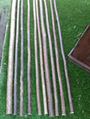 Hazel Walking Sticks Shanks