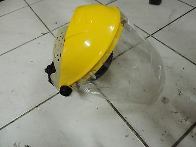 Safety Shield with Replaceable Face