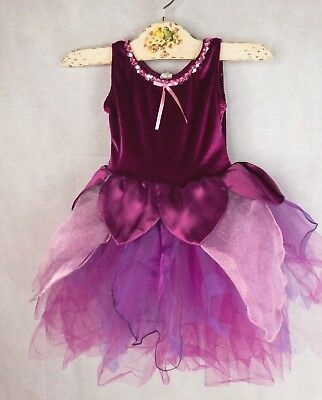 Creative Education Fairy Dress princess Size 5-6  Photo Shoot Costume