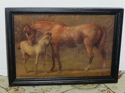 """""""Mare & Colt"""" Reverse Printed 12""""x 8 1/2"""" Wooden Framed Glass Print, USA"""