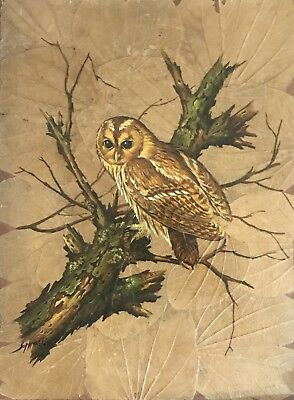 ANTIQUE,P. SOMMAL,OWL Oil Painting ON LEAVES,TREE,BIRD STUDY,RARE,Signed,LARGE