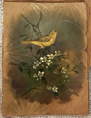 ANTIQUE,P. SOMMAL,RARE,BIRD STUDY,BIRD Oil Painting ON TREE LEAVES,SIGNED IN RED