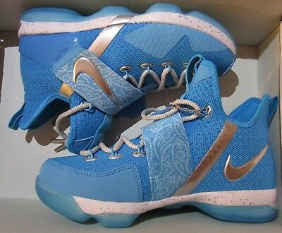 6f62786ad72d Lebron XIV 14 HWC GS the nature boy blue youth shoe size 6.5y AA3258 404