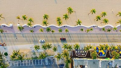 Palm Beach Coastal Road Seaside Drone Overhead Large Canvas Picture Wall Art