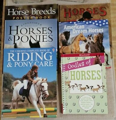 Lot 6 HORSE Books Riding Care Handling Horsemanship Breeds Pony Ponies Fun