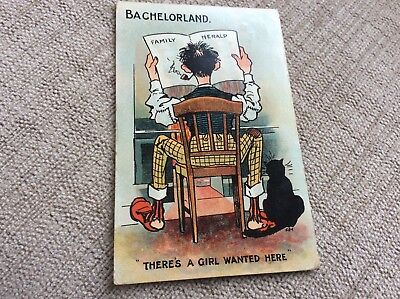 BACHELORLAND, THERES A GIRL WANTED HERE. BLACK CAT.   1909 card.