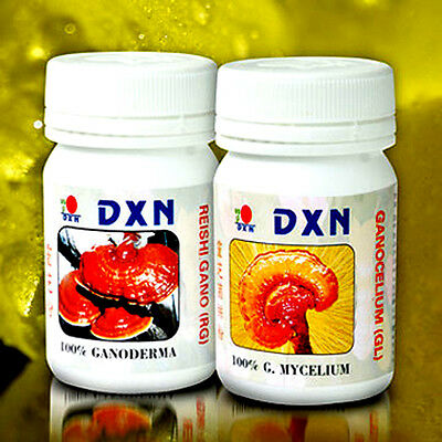 best diet pills to lose belly fat fast