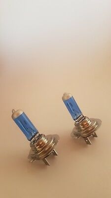 H7 55w-xenon Look Halogen Bulb Set H7 12 V 55 W Super White Nebelscheinwerfer