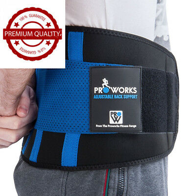 Proworks Lower Back Support Belt | Lumbar Brace for Exercise, Sports & Work...