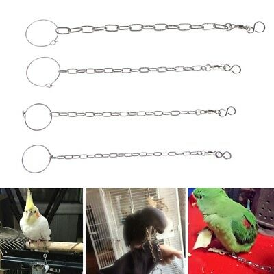 Stainless Steel Parrot Foot Chain Durable Ankle Foot Ring Stand Accessories