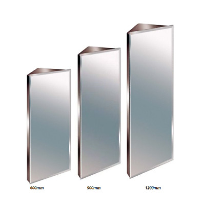 Stainless Steel Mirror Bathroom Corner Cabinet Bevelled Edge Reversible 3 Sizes