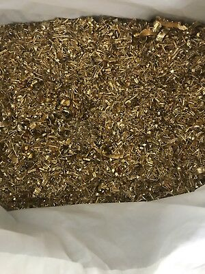 14 Pounds Whole Sale Brass Shavings Turnings Chips Art Craft Orgone Science 14LB