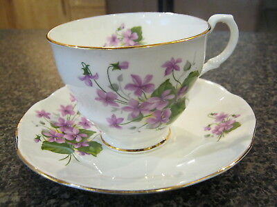 ROSINA TEACUP CUP SAUCER PURPLE VIOLETS w/ GOLD TRIM