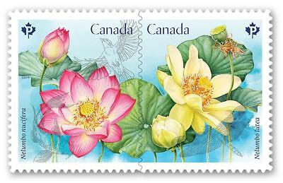 2018 Canada PINK and YELLOW LOTUS Stamps ~ From Booklet MNH ~ FREE SHIPPING