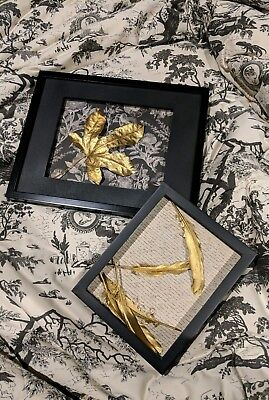 NEW🍁Natural Maple Autumn Leaf 🍁 Gold Black Shadow Box wall Picture Frame Decor