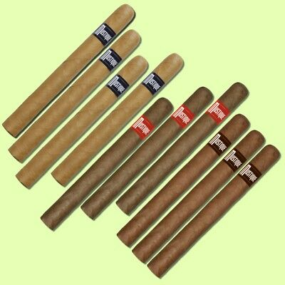 10 Mustique Churchill Zigarren - ZUM TESTEN - 4 X Blue / 3 X Red / 3 X Amber (x)