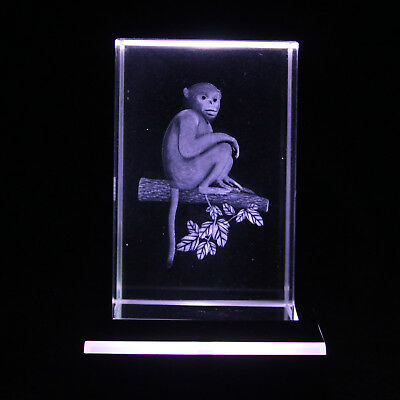 Monkey 3D LASER ENGRAVED IMAGE BOXED ZOO OWNER LOVER BIRTHDAY PRESENT GIFT Idea