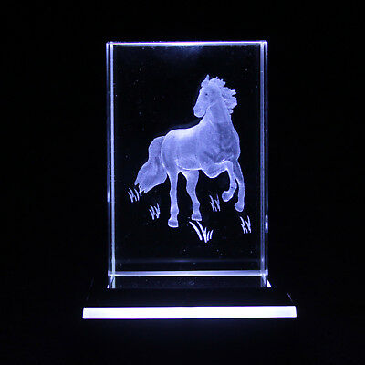 Standing Horse 3D LASER ENGRAVED IMAGE BOXED BIRTHDAY PRESENT GIFT Idea