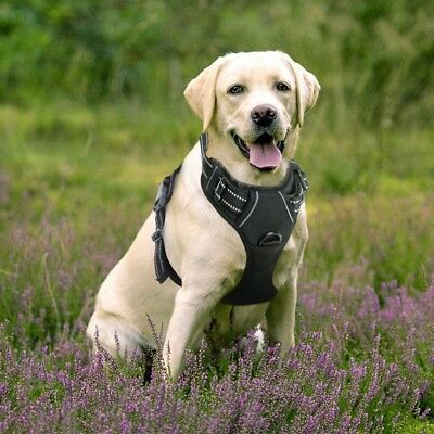 Rabbitgoo Dog Harness NoPull Pet Harness Adjustable Outdoor Pet Vest 3M Reflec