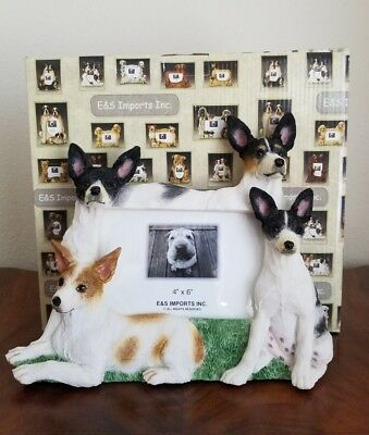 "Rat Terrier Picture Frame by E & S Imports for 4"" X 6"" Photo"