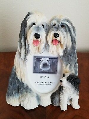 """Bearded Collie Dog Picture Frame for 3.5"""" X 5"""" Photo"""