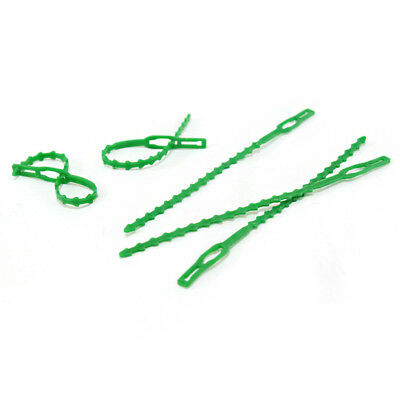Preservative Fixed Plant Vines Practical Gardening Harness Fixed Buckle
