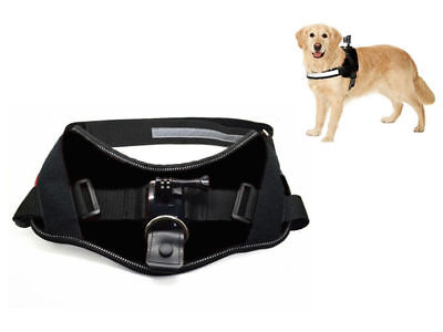 Activeon Hundeweste ACM09DV 360 Dog Vest für Action Kamera Cam CX und CX Gold