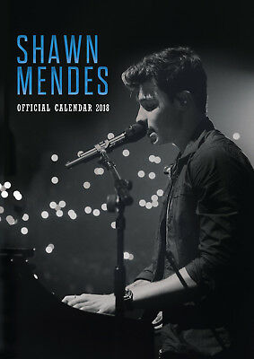 Shawn Mendes Official 2018 Calendar - A3 Poster Format 9781785493249