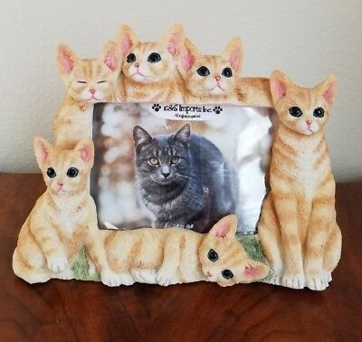 "Yellow Orange Tabby Cat Picture Frame for a 4"" X  6"" Photo"