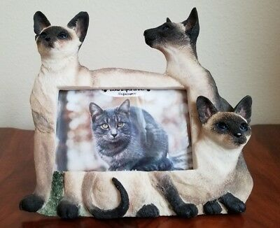 """Siamese Cat Picture Frame for a 4"""" X 6"""" Photo"""