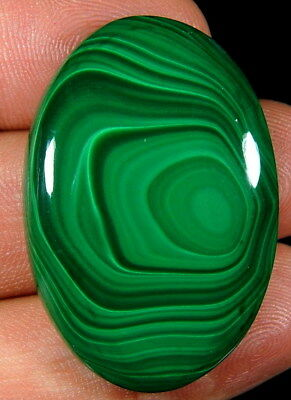 Cabochon pierre fine en Malachite 38x26x6 mm