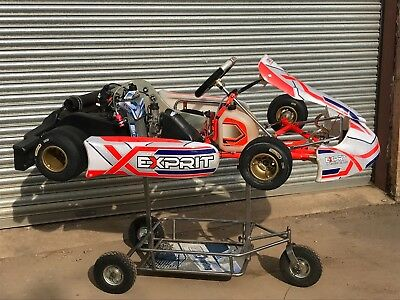 2017 Exprit TonyKart 401s With Rotax Max Engine 125cc .